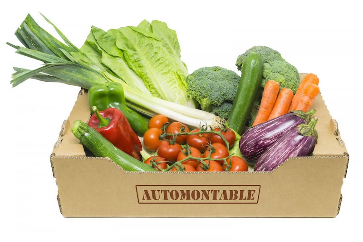 Caja Agricultura