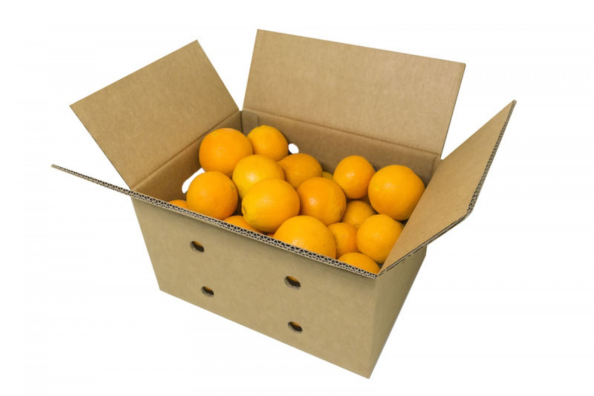 Caja para Fruta